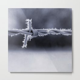 Frosted Barbed Wire Metal Print