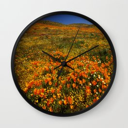 California Poppies Wall Clock