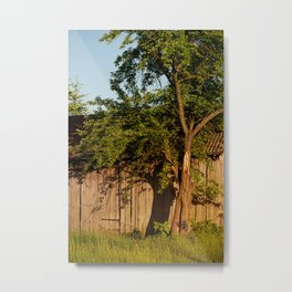 Dilapidated old wooden shack and tree shadow Metal Print
