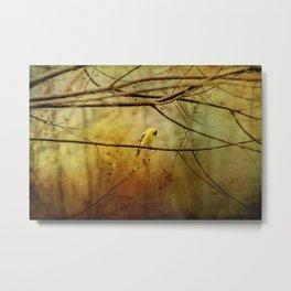 Yellow Songbird in Morning Prayer Metal Print