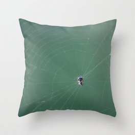 In the spider's net Throw Pillow