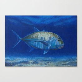 Giant trevally fish Canvas Print