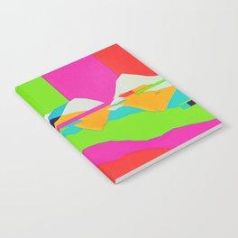 DELETE Notebook
