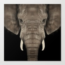 Elephant Sym Canvas Print