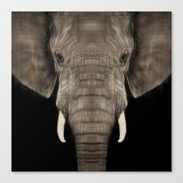 Elephant Sym Canvas Print