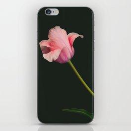 Elegant pinkon black old-master botancial print style:  Perfect Pink Tulip photograph iPhone Skin
