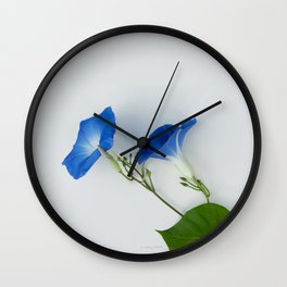 Good Morning Glory:  Fine Art Photo of Flowers in Bold Blue on White Wall Clock