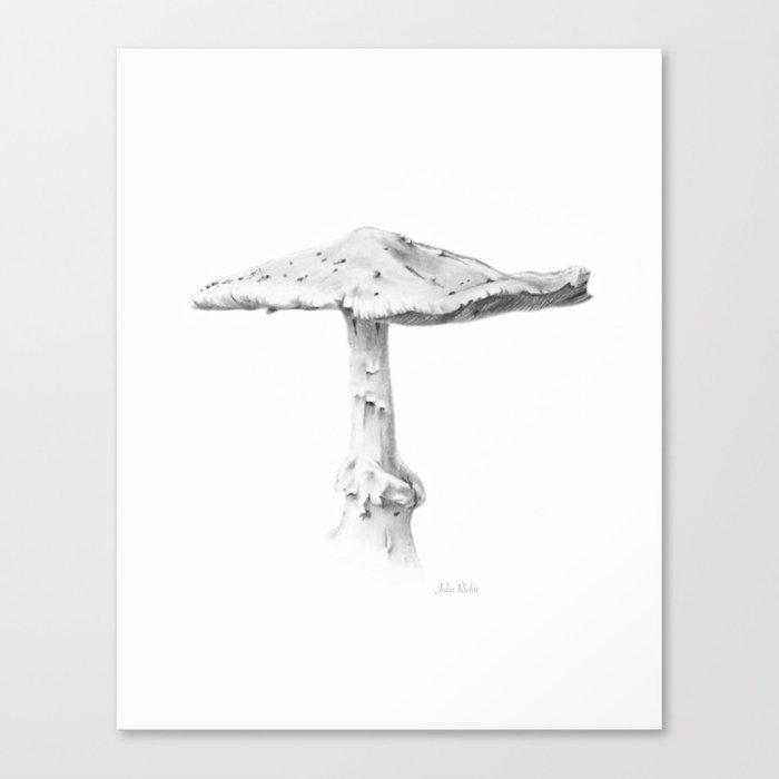 Mushroom #1 Canvas Print