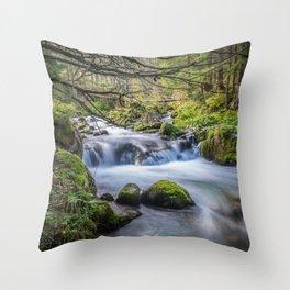 River in wonderland Throw Pillow