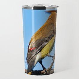 Cedar Waxwing on a Limb Travel Mug