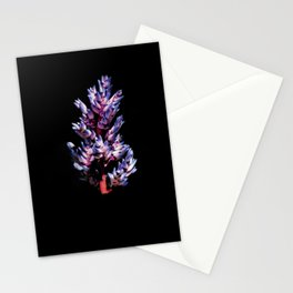 Back from Black Stationery Cards
