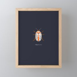 Calligrapha Beetle Framed Mini Art Print