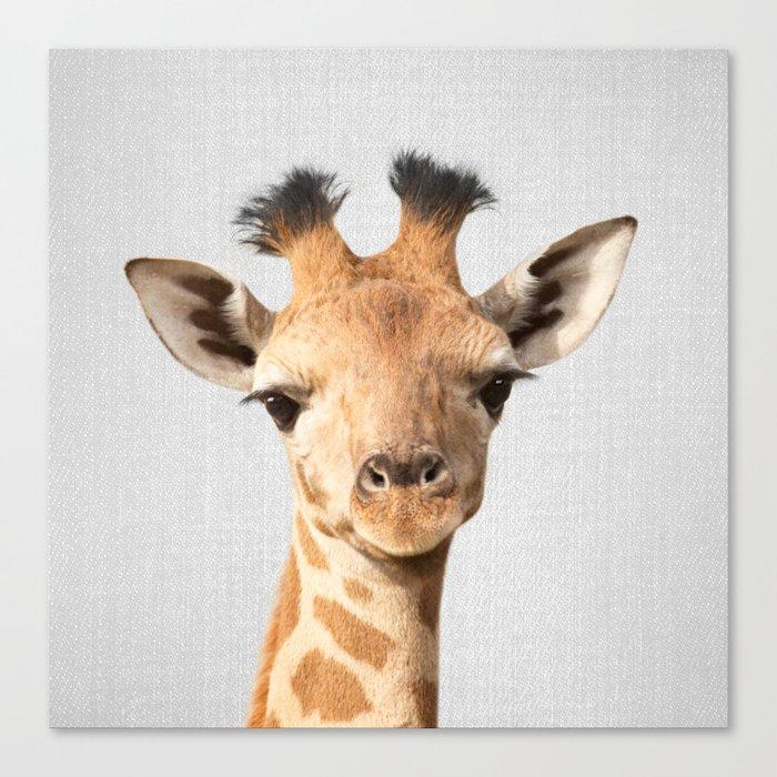 Baby Giraffe - Colorful Canvas Print
