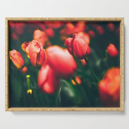 Red Tulips Serving Tray