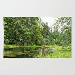 Hoh Rainforest Scene Rug
