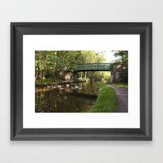 Swans of Haigh Framed Art Print