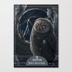 solar owl jupiter  Canvas Print