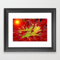 Sunburst Dahlia Framed Art Print
