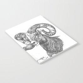 full curl Notebook