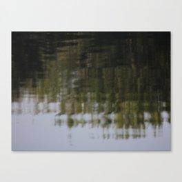 Ripple the Mirror Canvas Print