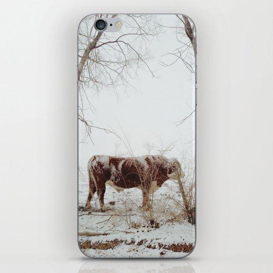 Maxwell iPhone & iPod Skin