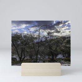 Trees in the morning Mini Art Print