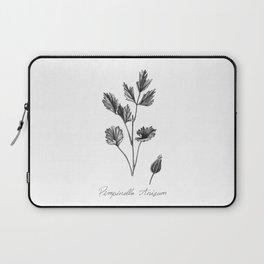 Anise Botanical Illustration Laptop Sleeve