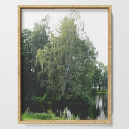 Large white birch on the shore of a reservoir with a dangling leaf crone Serving Tray