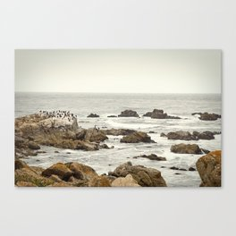Ocean and Rocks Canvas Print