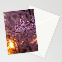 Cherry Blossom Sunset Stationery Cards
