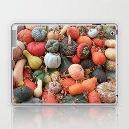 cornucopia (heirloom pumpkins and squashes) Laptop & iPad Skin