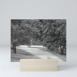 down the driveway Mini Art Print