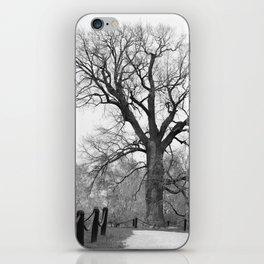 Century Oak iPhone Skin