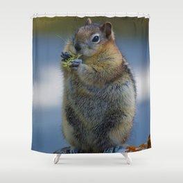 Ground Squirrel in Jasper National Park Shower Curtain