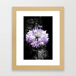 Lila flower Framed Art Print
