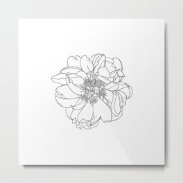Single flower botanical illustration - Orla Metal Print