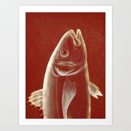 Piscibus 2 Art Print