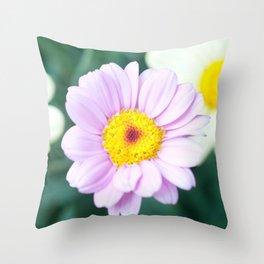 Soft Pink Marguerite Daisy Flower #1 #decor #art #society6 Throw Pillow