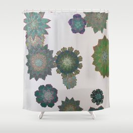 Growing Succulents Shower Curtain