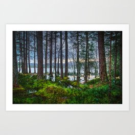 Flooding into the forest Art Print