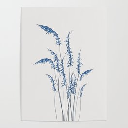 Blue flowers 2 Poster