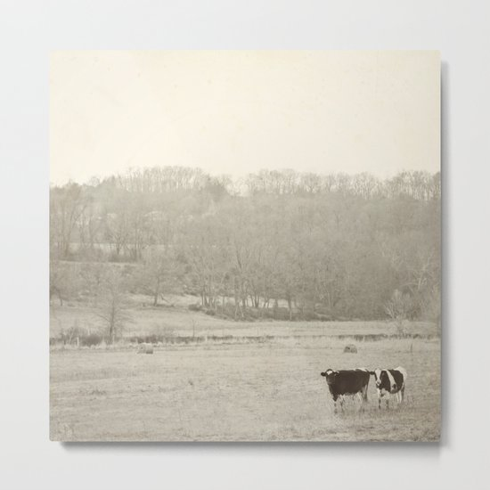 How now two cows  Metal Print