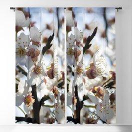 Little Flowers Blackout Curtain