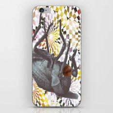 Buggys iPhone & iPod Skin