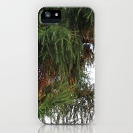 Larch Tree iPhone Case