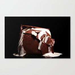 structural integrity Canvas Print