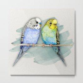 Two cute budgies watercolor Metal Print