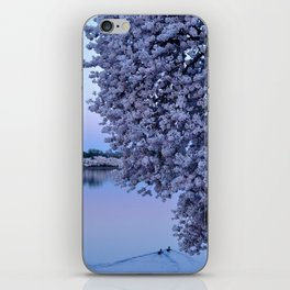 Just Floating By (DC Cherry Blossoms) iPhone Skin