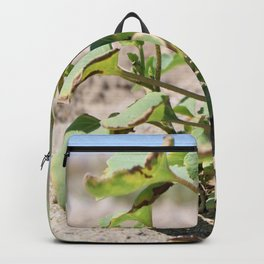 Beach Plant by the Sea Backpack