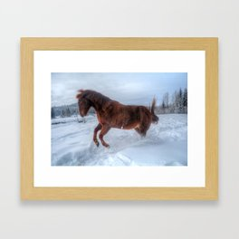 Fire and Ice - Equine Photography Framed Art Print